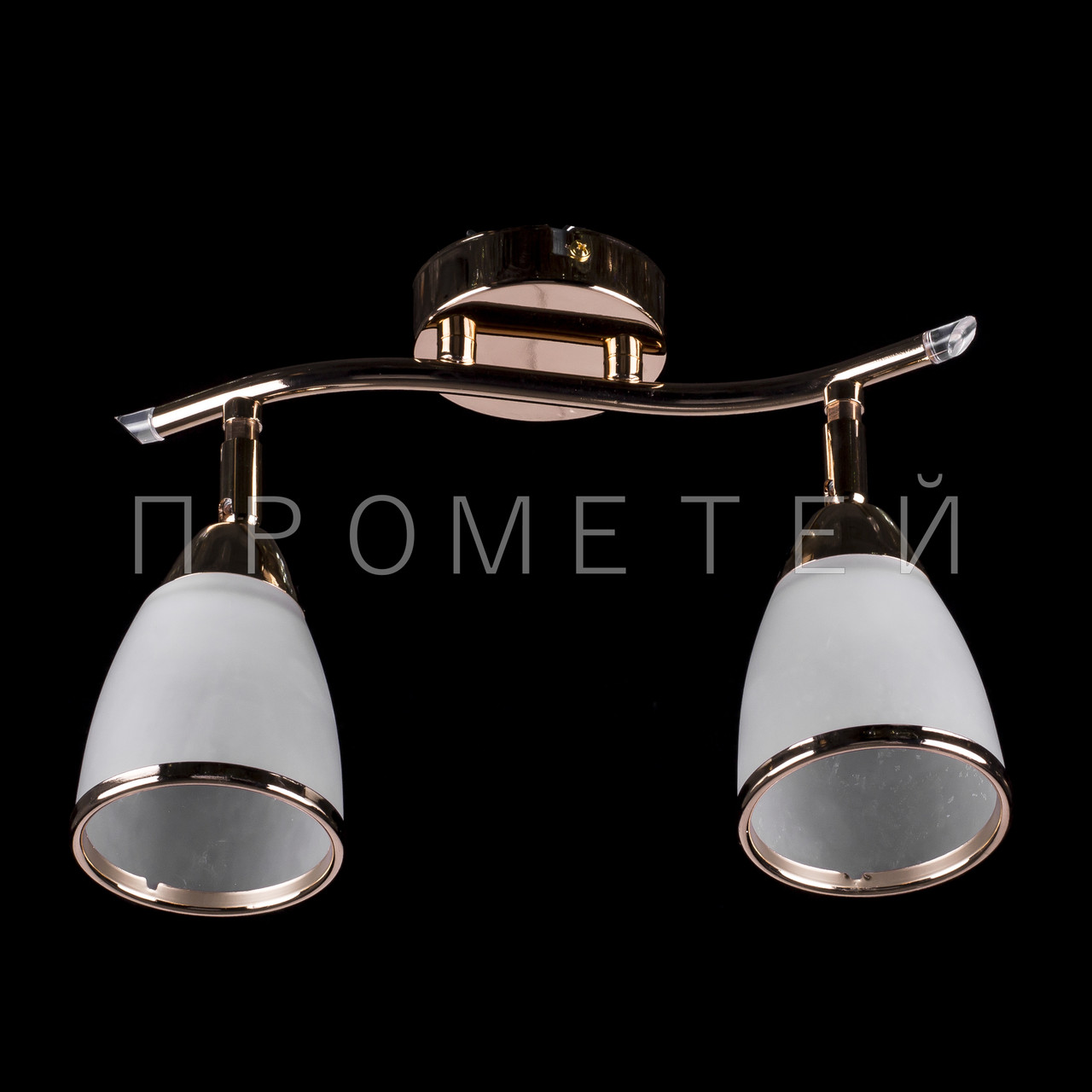 Припотолочная люстра спот (направляемая) на две лампочки (золото)  P3-76920/2C/FG+WT