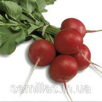 Семена редиса Сора (Sora) 250 гр.