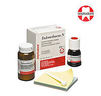 Endomethasone N(Эндометазон набор),14г+10мл,Septodont