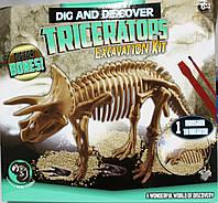 """Набор """"Раскопай скелет динозавра"""" Triceraptors (1модель)"""