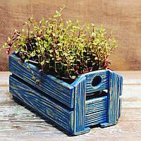 Декоративное садовое кашпо