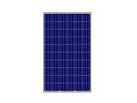 Солнечная панель AmeriSolar AS-6P-335, 335 Вт, Poly, фото 1