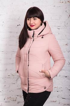 Женские куртки сезона весна-осень 2020 - В НАЛИЧИИ