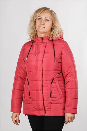 Куртка демисезонная Рута 48-56р