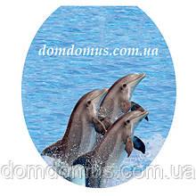 Сиденье мягкое с крышкой для унитаза  Aqua Faire, UE1602