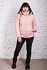 Женская куртка батальных размеров от производителя в Украине - модель весна 2018 - (кт-234), фото 3