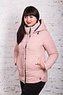 Женская куртка батальных размеров от производителя в Украине - модель весна 2018 - (кт-234), фото 2