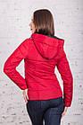 Женская брендовая куртка - модель весны 2018 - (кт-248), фото 3