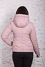 Женская весенняя куртка - модель 2018 - (кт-250), фото 4