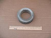 Шестерня коленчатого вала ЯМЗ-236/238 (236-1005030)
