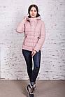 Весенняя куртка для девушек - весенняя модель 2018 - (кт-255), фото 3
