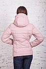 Весенняя куртка для девушек - весенняя модель 2018 - (кт-255), фото 5