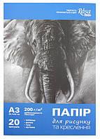 Папка для рисунку та черчения, ROSA Studio, А3 (29,7х42 см), 200г/м2, 20л.