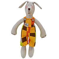 Собака декоративная мальчик в костюме клеточка