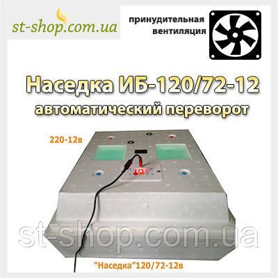 """Инкубатор бытовой """"Наседка ИБ-120/72-12В"""" автоматический переворот (вентилятор и тен)"""