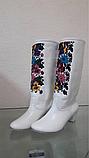 Сценічне жіноче взуття, фото 2
