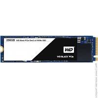 Твердотельный Накопитель Western Digital M.2 256GB (WDS256G1X0C) Black