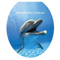 Сиденье мягкое с крышкой для унитаза  Aqua Fairy Luxe, UE1625