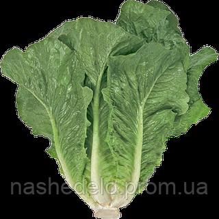 Семена салата Викторинус 1000 семян Rijk Zwaan