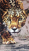Полотенце пляжное Леопард (Pliag-046)