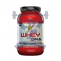 Протеин BSN Whey DNA™ 840г спортивное питание