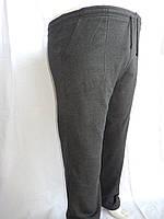 Спортивные мужские штаны, CREPE на байке, батал 004