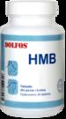 Dolfos HBM Cat and Dog  витамины ГБМ для кошек и собак 30 таб