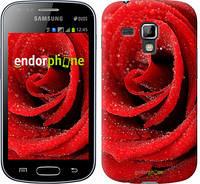 "Чехол на Samsung Galaxy S Duos s7562 Красная роза ""529c-84-7794"""
