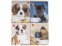 Тетрадь 18 листов клетка Твердая Мой щенок (цена за упаковку 20шт)