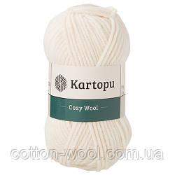Cozy Wool 75% Акрил 25% Шерсть K025
