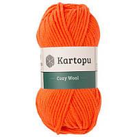 Cozy Wool 75% Акрил 25% Шерсть K1211