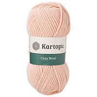 Cozy Wool 75% Акрил 25% Шерсть K1873