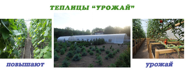 фермерские теплицы