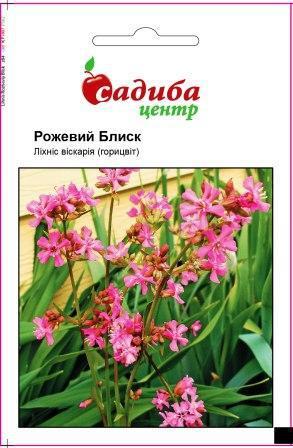 Семена Лихнис вискария (горицвет) Розовый блеск 0,1 СЦ