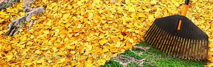 Грабли для уборки листьев от Fiskars Solid (135016), фото 2