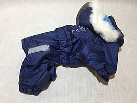 Комбинезон Сильвер 29 см разм №1 синий для собак