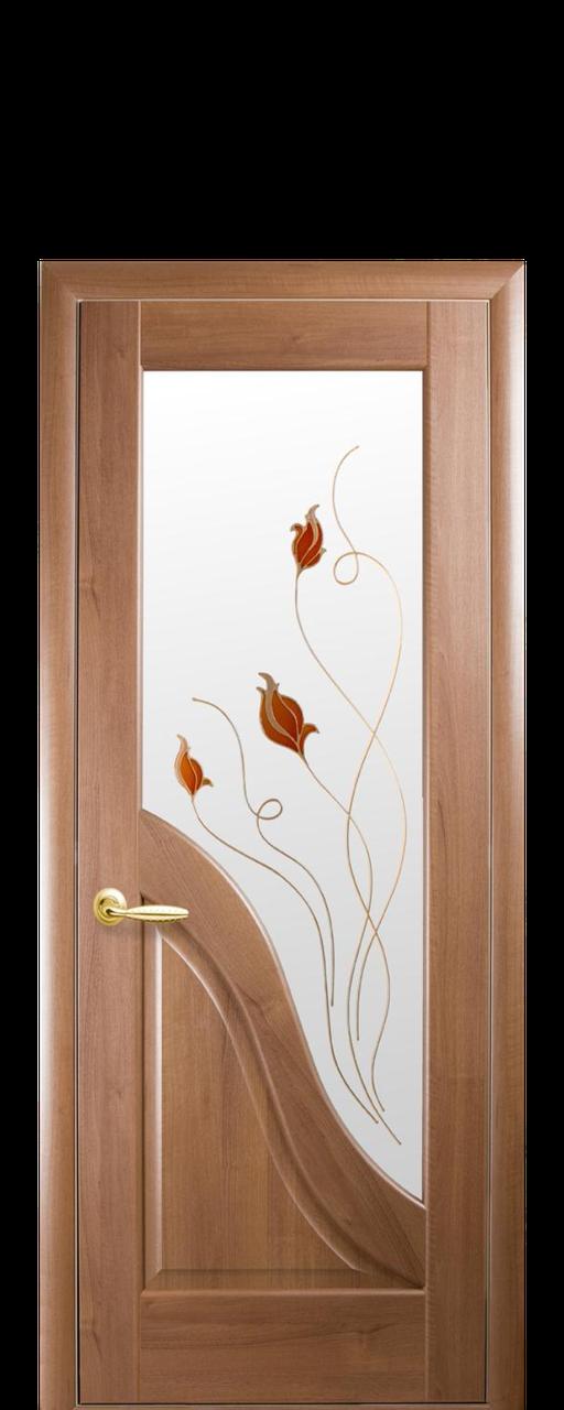 """Межкомнатные двери """"Амата"""" со стеклом сатин и цветным рисунком"""
