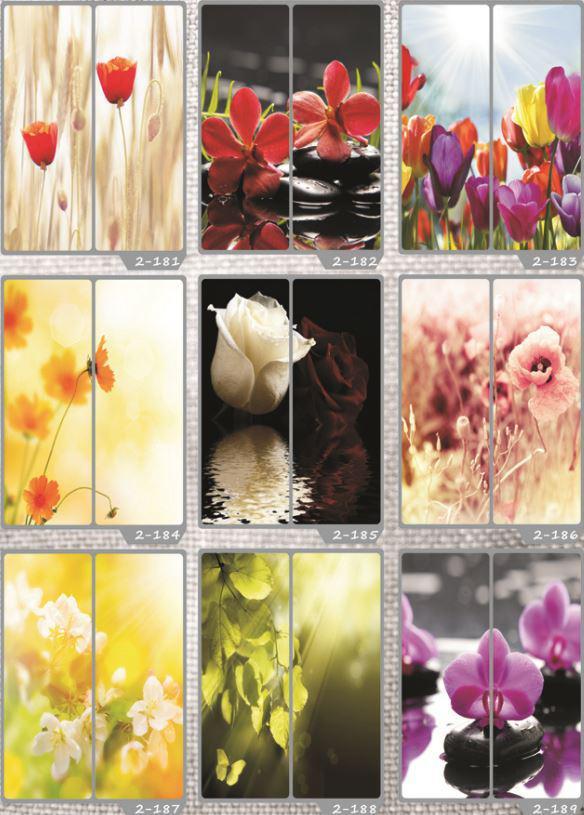 Фотомолекулярная печать полноцветные рисунки (28)