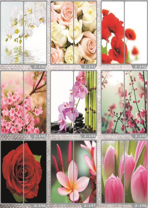 Фотомолекулярная печать полноцветные рисунки (29)
