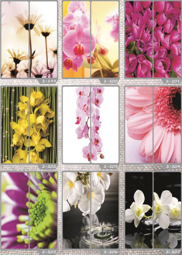 Фотомолекулярная печать полноцветные рисунки (30)