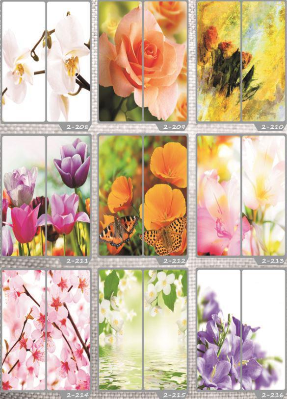 Фотомолекулярная печать полноцветные рисунки (31)