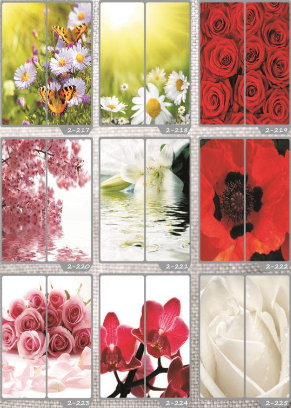 Фотомолекулярная печать полноцветные рисунки (32)