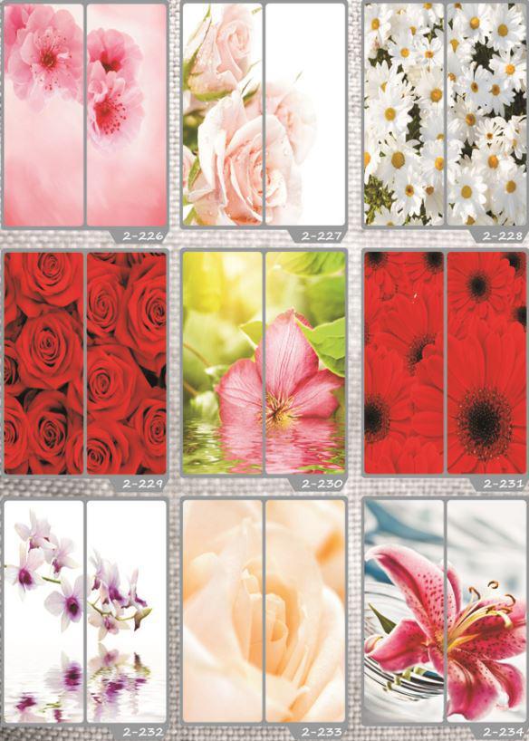 Фотомолекулярная печать полноцветные рисунки (33)