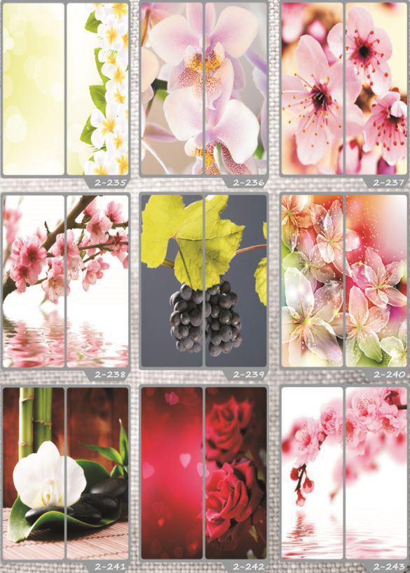 Фотомолекулярная печать полноцветные рисунки (34)