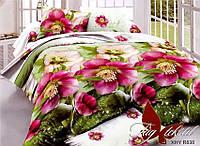 Комплект постельного белья ТМ TAG Евро, постельное белье Евро XHY838