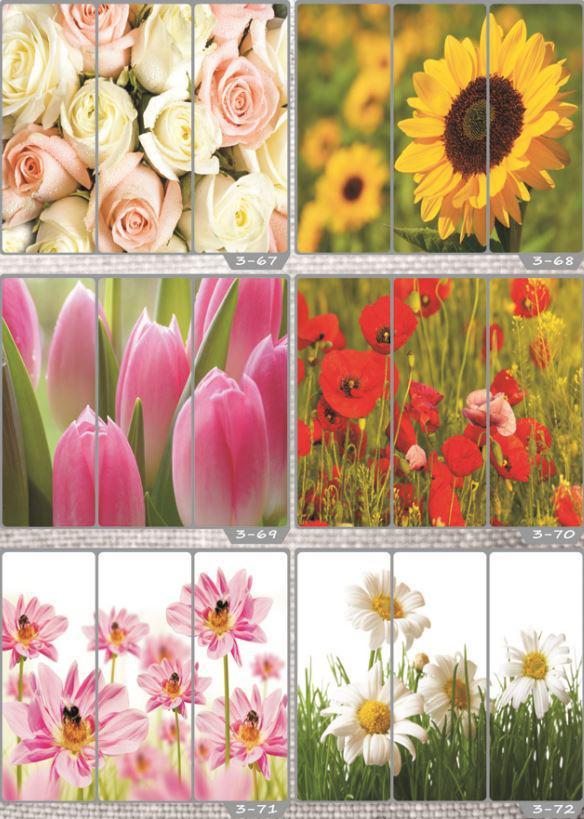 Фотомолекулярная печать полноцветные рисунки (54)