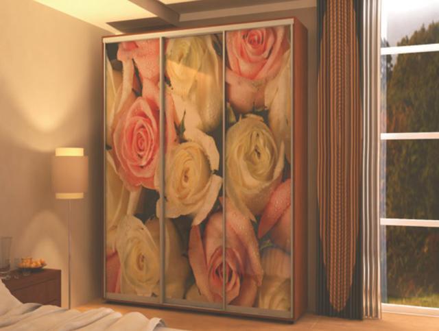 Фотомолекулярная печать полноцветные рисунки шкаф-купе (фото 5)
