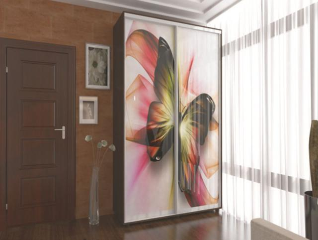 Фотомолекулярная печать полноцветные рисунки шкаф-купе