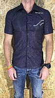 Рубашка мужская фиолетовая с коротким рукавом ОПТ  LV-200