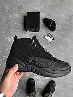 2c60d401ddc4 Мужские кроссовки Nike Air Jordan Retro 12